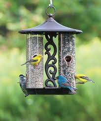 decorative bird feeders