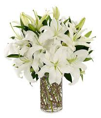 white lillies simply white at from you flowers
