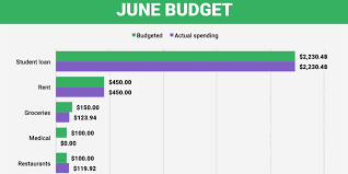 budget of 29 year old paying over 100 000 of student loans