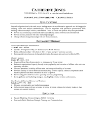Job Resume Examples For Sales by Professional Resume Channel Sales
