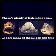 Fish In The Sea Meme - there s plenty of fish in the sea meme picture webfail fail