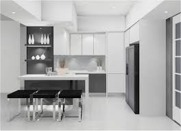 Coloured Kitchen Cabinets Amusing Modern Style Kitchen Featuring White Black Colors Kitchen