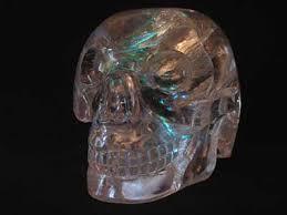 amar skull from tibet