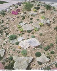 rock garden primer fine gardening