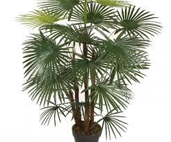 relieving artificial palm tree plant arrangement office decor to