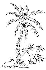 malvorlagen strand palmenbaume 3