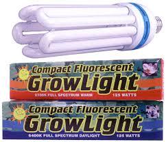 cfl grow lights for indoor plants fluorescent grow lights at ladybug indoor gardens