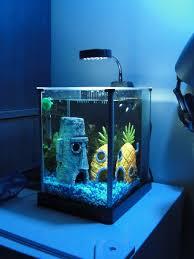sponge bob aquarium http www ebay itm spongebob pineapple