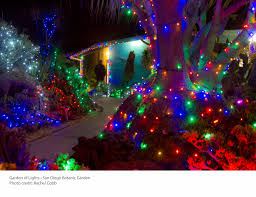 Botanical Gardens Christmas Lights by Weekend Guide Christmas Edition Times Of San Diego