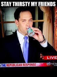 Rubio Meme - marco the water boy rubio out of hiding the progressive latino