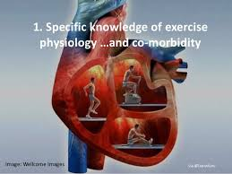 Anatomy And Physiology Exercise 10 10 Reasons Why Physiotherapists Are Perfectly Placed To Deliver Exerc U2026