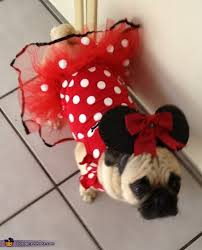 Disney Halloween Costumes Dogs Minnie Mouse Costume Homemade Minnie Mouse Costume Mice