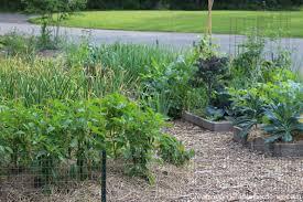 creative vegetable gardener 4 popular gardening podcasts you