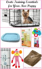 best 25 crate training ideas on pinterest puppy crate dog