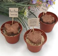 eco friendly wedding favors adorable organic mini plantable pots for your wedding favors
