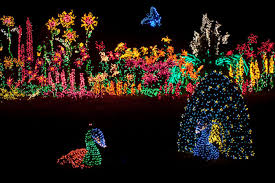 Zoo Lights Woodland Park 10 Best Christmas Light Displays In Washington 2016
