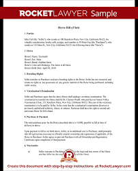 horse bill of sale form bill of sale for horse template with