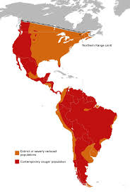 Labeled South America Map by 203 Best Maps U0026 Flags North U0026 South America Images On Pinterest