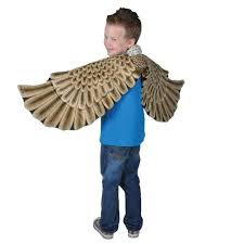 Owl Halloween Costumes For Kids by Amazon Com Eagle Plush Costume Wings Toys U0026 Games