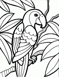 parrot coloring page printable coloring pages