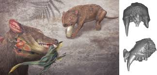 with dinosaurs out of the way mammals had a chance to thrive
