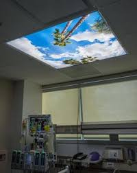 2 X 4 Ceiling Light Covers Basement Remodel Sky Ceiling Panorama 2094 9 Fluorescent Light