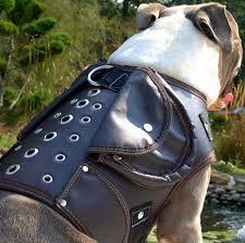 boxer dog on motorcycle amazon com leather dog jacket coat collar walking harness