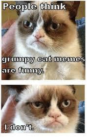Funny Grumpy Cat Meme - people think grumpy cat memes are funny i don ta meme on