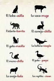 111 Lecciones Que La Vida Iii 1 Sonidos De Animales Bóxer Y Más Español