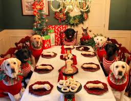 dogs at dinner table couple sets up a christmas dinner table for dogs neatorama