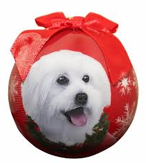 maltipoo ornament shatter proof easy