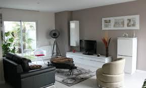 idee deco salon canape noir stunning salon noir gris contemporary amazing house design