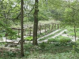 Garden With Trellis Beautiful Gardens With Trellis And Walking Paths Picture Of Gene