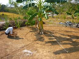 garden design garden design with keyhole garden permaculture