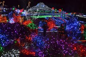 Holiday Lights In Houston Best by Christmas The Outlaw Gardener On Seventh Day Of Christmasoo
