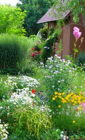 423 best beautiful flowers u0026 gardens images on pinterest