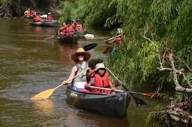 Baptist diverse essay many river tradition tributaries   Crank Content Ipgproje com