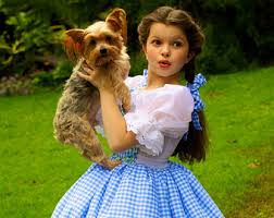 Toddler Dorothy Halloween Costume Luxury Children U0027s Costumes Handmade Usa Elladynae