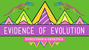 evolution it u0027s a thing crash course biology 20 youtube