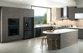 black cabinets with black appliances black appliances black stainless appliances with dark cabinets
