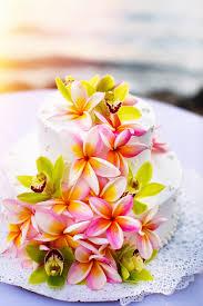 best hawaiian wedding cake recipe culinary pies photo blog