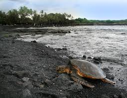 big island u2013 travel guide at wikivoyage