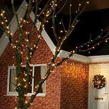 buy outdoor tree lights today from festive lights
