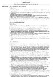 exle of a simple resume groundskeeper resume sles velvet