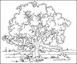 download tree u0026 leaves coloring pages for kids u0026 color zini