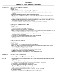 sap crm technical consultant resume sap crm resume samples velvet jobs