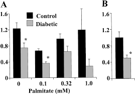 evidence of separate pathways for lactate uptake and release by