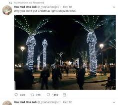 palm tree christmas tree lights christmas lights on palm trees in italy draws big laughs the