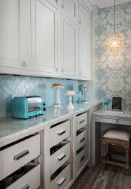 walk in kitchen pantry design ideas dura supreme kitchen walk in pantry with ornate baby blue