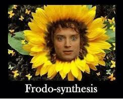 Frodo Meme - frodo synthesis frodo meme on me me
